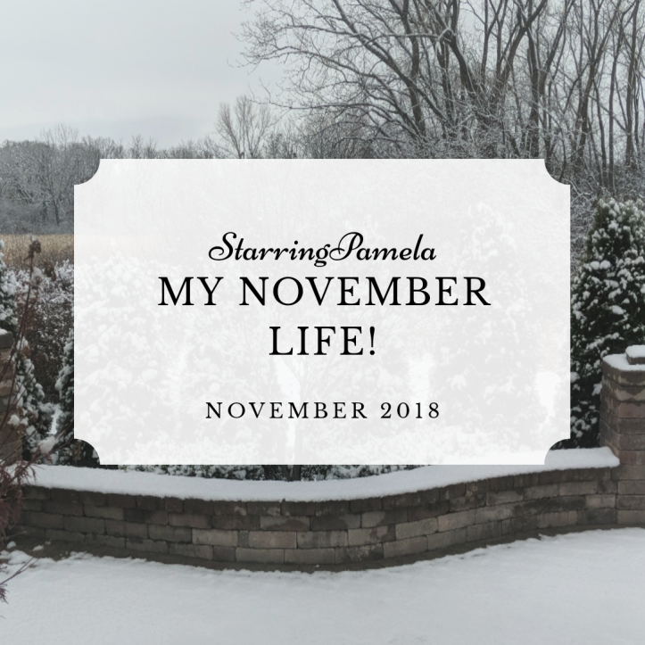 my november life 2018 featured image