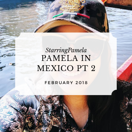 Pamela in Mexico 2019 Part 2 Featured Image