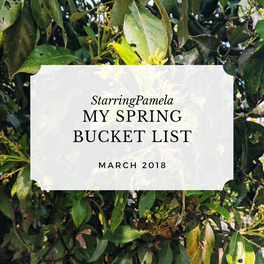 spring 2019 bucket list