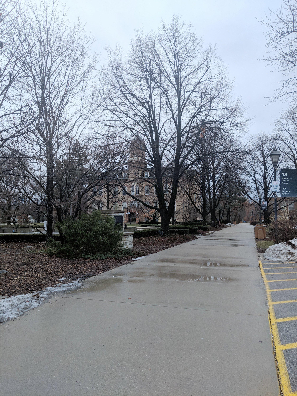 Elmhurst College Winter