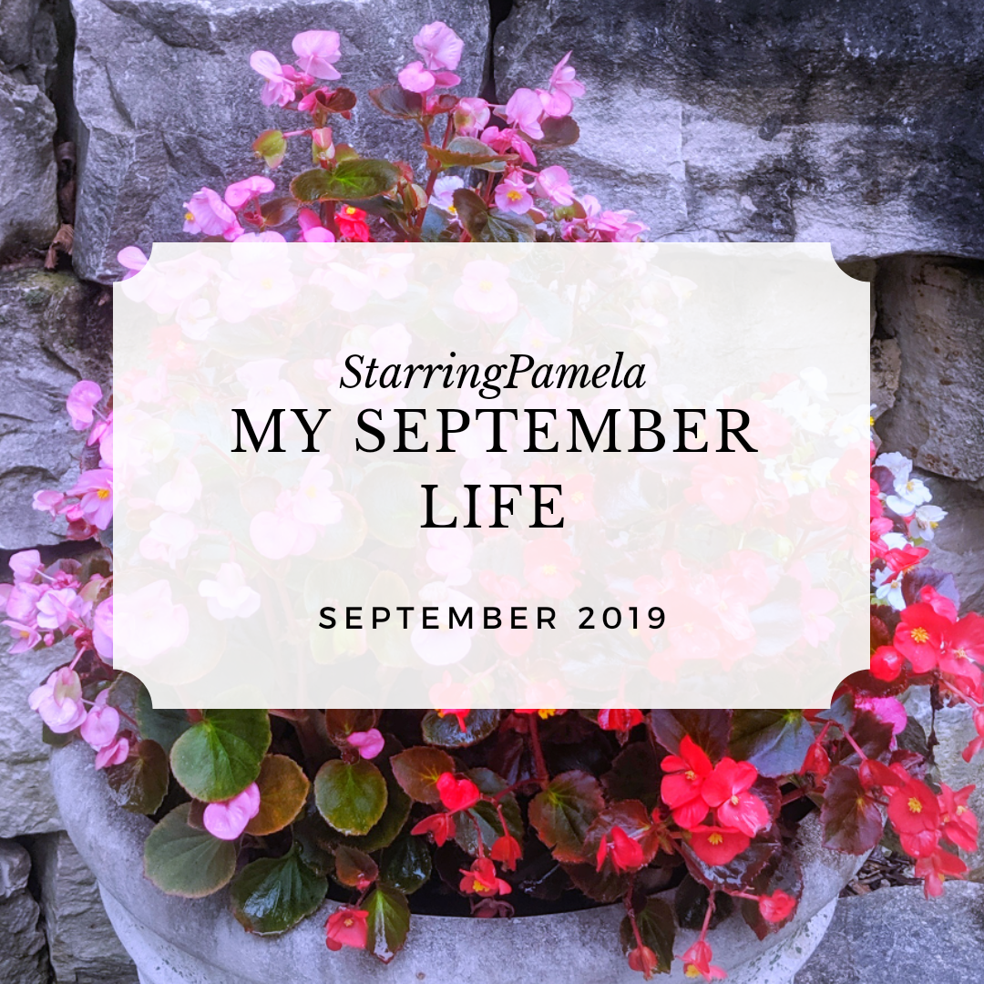 my september life featured image