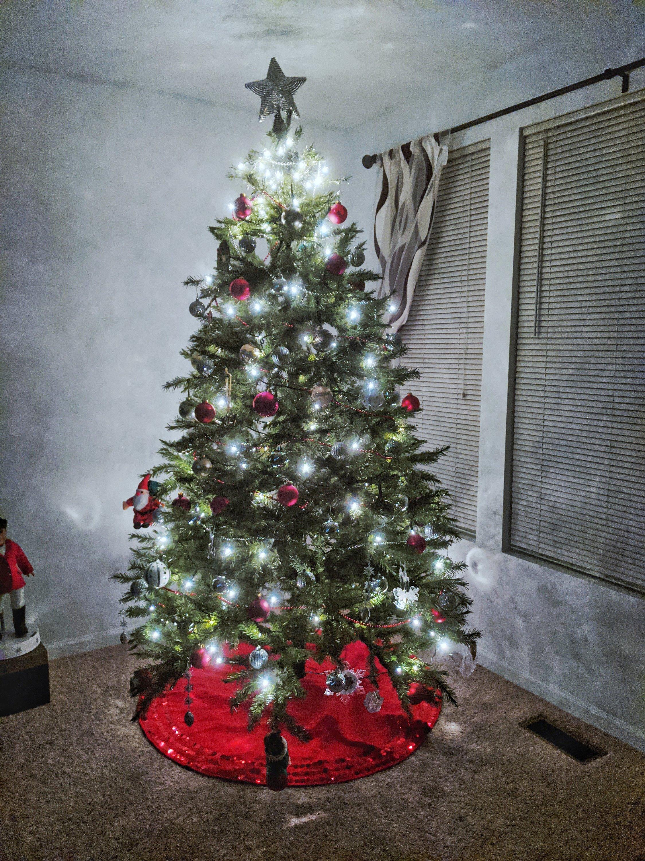 my 2019 christmas tree nighttime light