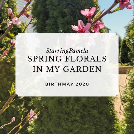 spring florals in my garden featured image