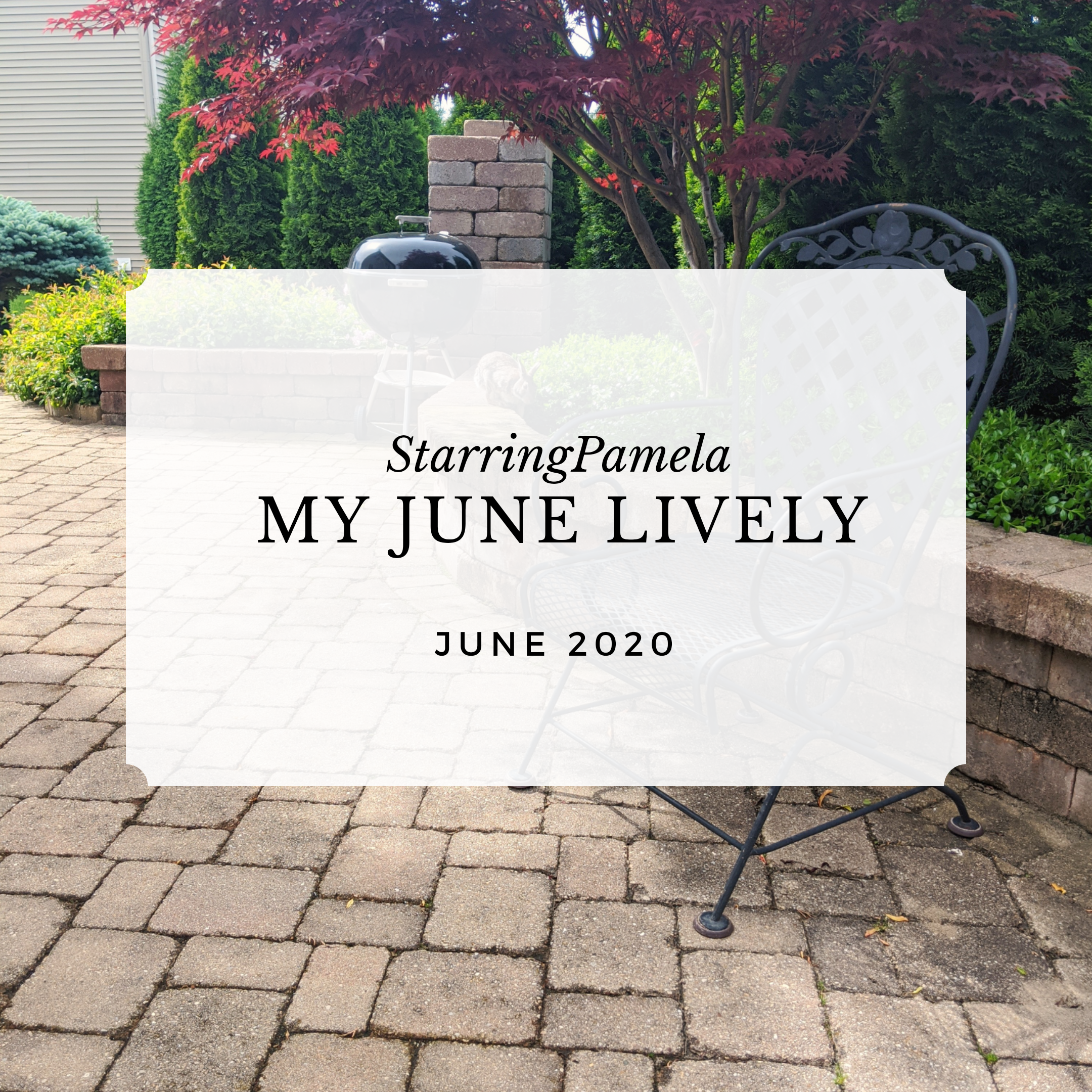 my lively june featured image