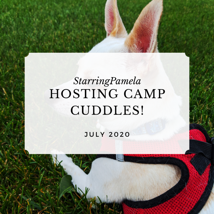 hosting camp cuddles featured image