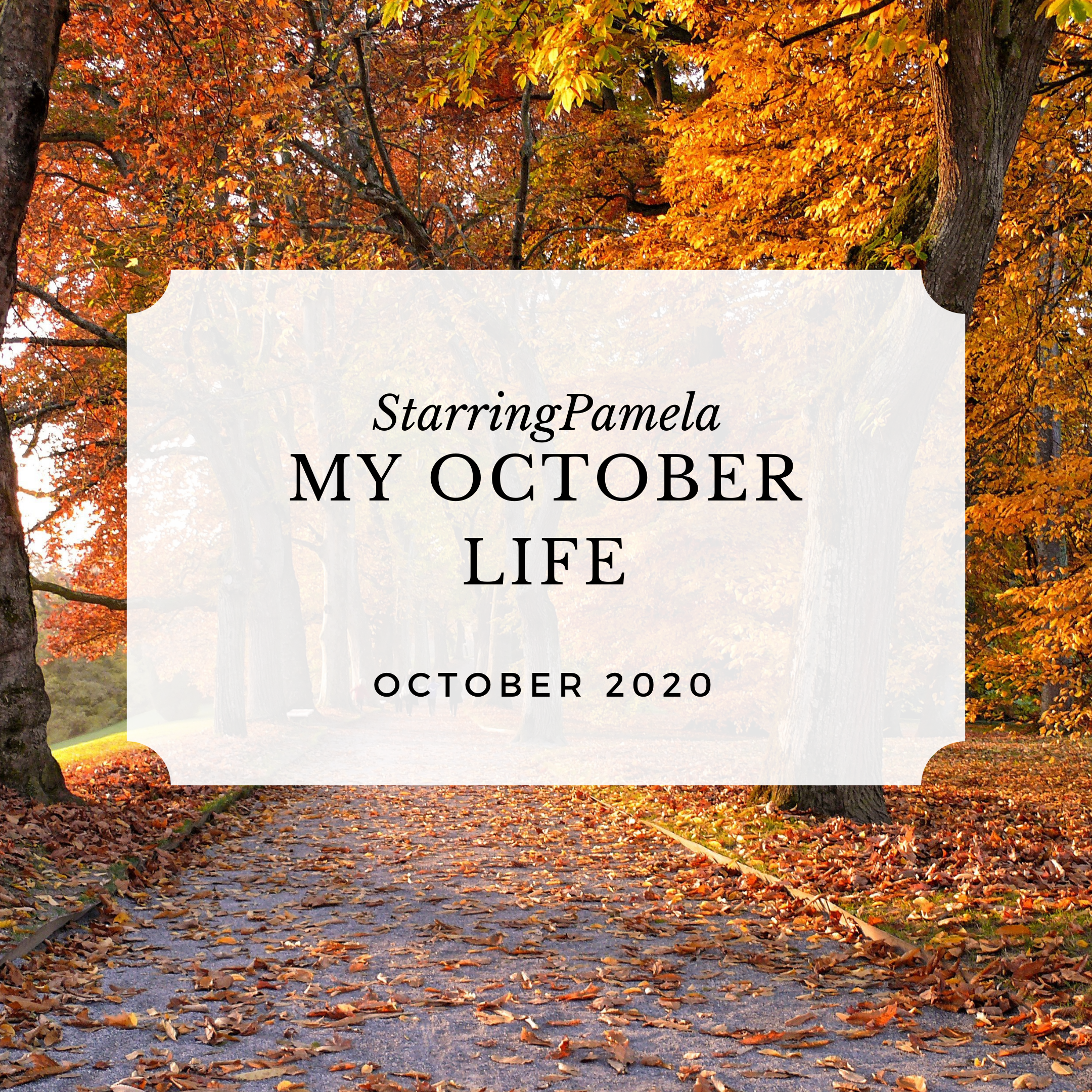 my october life featured image