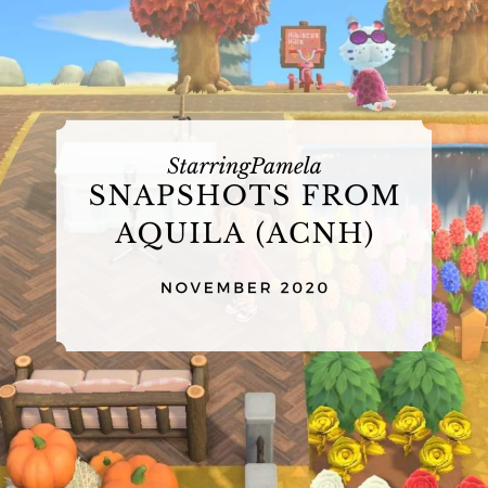 snapshots from aquila nov 2020 featured image
