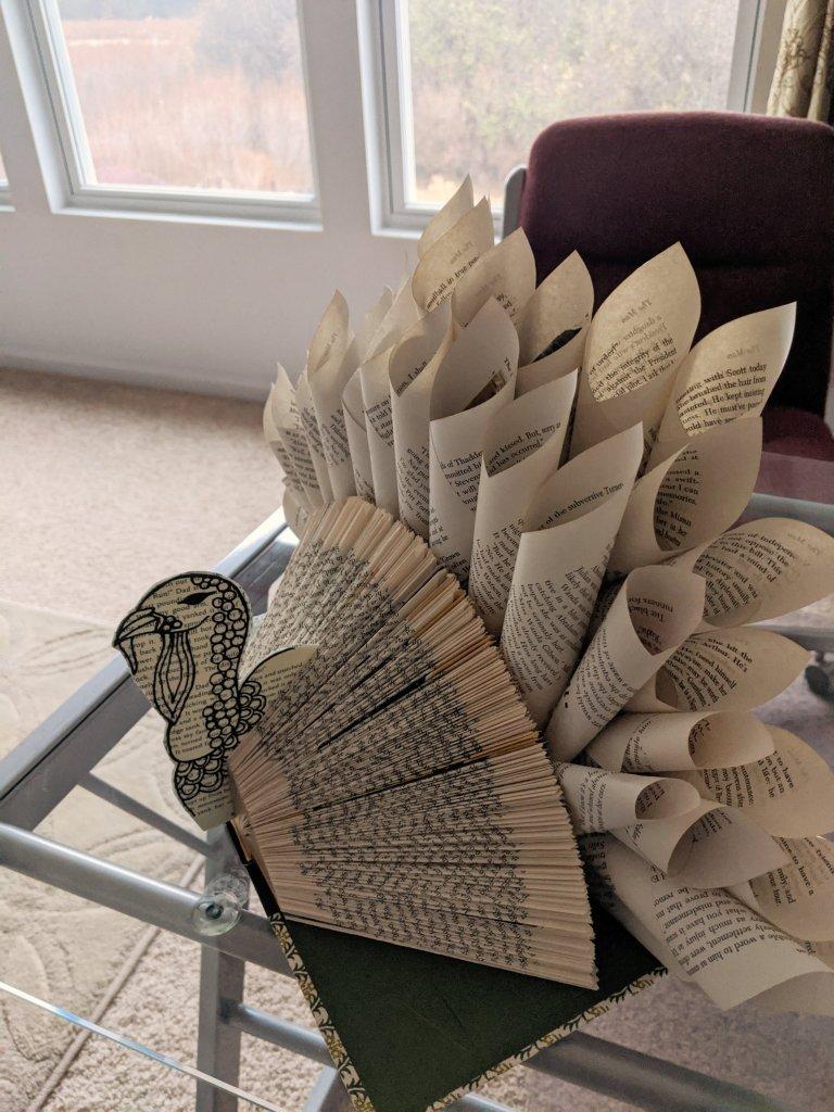 my lively november book turkey