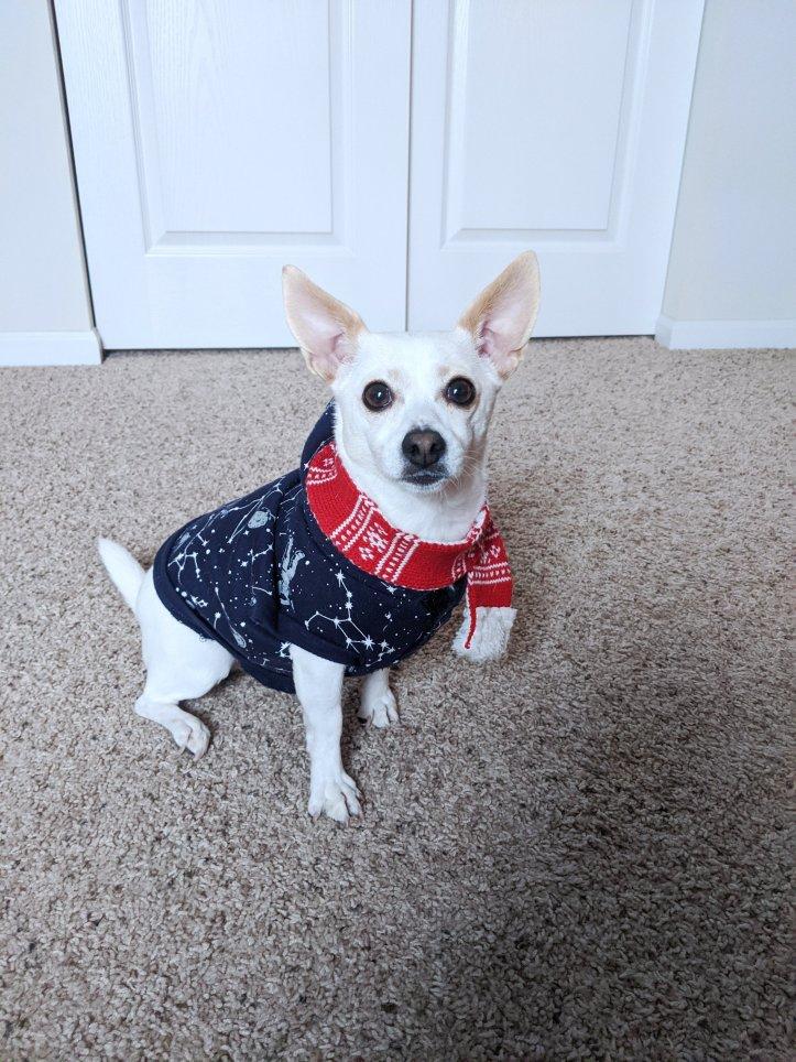 arya's christmas outfits festive scarf