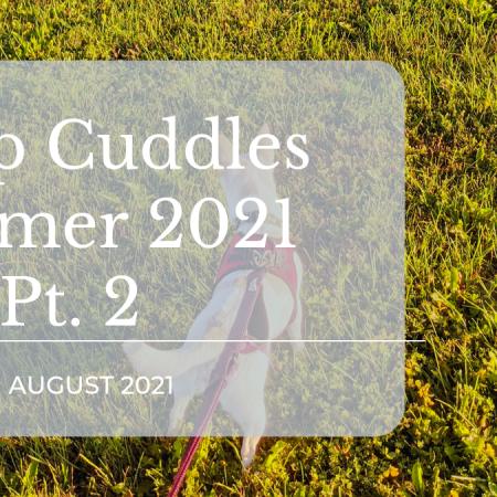 camp cuddles summer 2021 pt 2 featured image