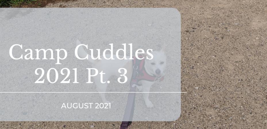 camp cuddles summer 2021 pt 3 featured image